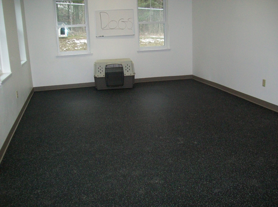 Rubber Gym Flooring used for kennel application
